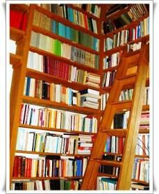 biblioteca-3