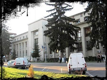 mosinschi-4