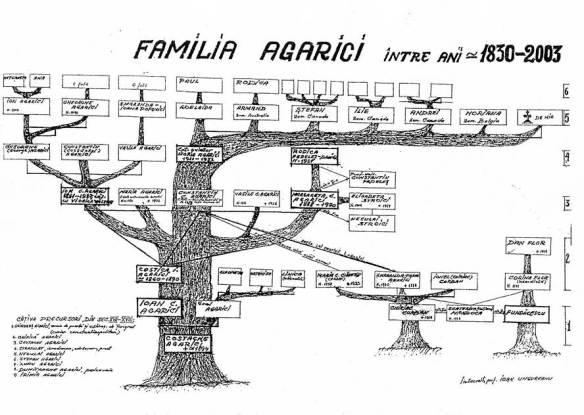 arboregenealogicagarici