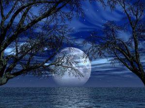 o-noapte-frumoasa-va-doresc-5_384e4507cc783f